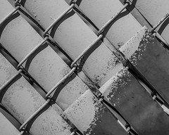 IMGP2150 (agianelo) Tags: chain link fence paint wire monochrome bw blackandwhite