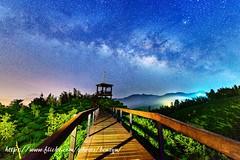 銀河夜 (Benz Yu) Tags: 銀河 大崙山 茶園 銀杏森林 夜景 風景 景觀台 羊灣 鹿谷鄉 山岳 星空 步道 milkyway