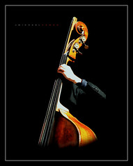 Bassist Incognito (J Michael Hamon) Tags: bass doublebass bassist orchestra philharmonic music musical string stringed blackbackground photoborder hamon nikon d3200 nikkor 55300mm portraiture symphony classical tonemapped columbusindiana instrument