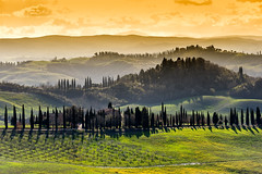 Following the cypresses way (SLpixeLS) Tags: italy italie tuscany toscane toscana chiusure cypress cyprès panorama pano