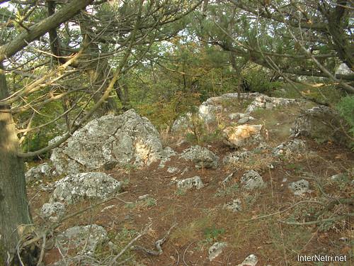 Крим, Таврські могильники на горі Кішка InterNetri Ukraine 2009 142