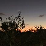 Boca Twilight - POTD #240 thumbnail