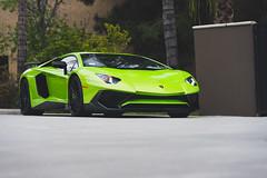 Super Veloce (Noah L. Photography) Tags: lamborghini aventador lp7504 sv green light lime car sportscar supercar italian hingwalee carsandchronos walnut