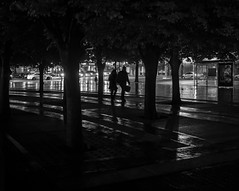 Rain Silhouettes: Walking Through the Trees (iMatthew) Tags: boston bw blackandwhite christiansciencecenter backbay night contrast handheld monochrome monochromatic availablelight rain reflection reflections streetphotography street olympuspenf olympuspen penf