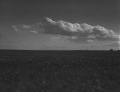 grass and clouds on 4x5 flm (Garrett Meyers) Tags: rbgraflex4x5 garrett meyers garrettmeyers 4x5film 4x5 graflex4x5 graflex blackandwhitefilm largeformat