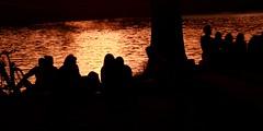 Parc de la Boverie (Liège 2018) (LiveFromLiege) Tags: liège sunset belgique belgium liege parcdelaboverie coucherdesoleil luik wallonie architecture lüttich liegi lieja europe city visitezliège visitliege urban belgien belgie belgio リエージュ льеж