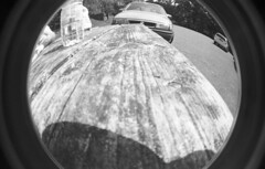 img021 (welshdude1991) Tags: lomography bw cats fisheye ilford 35mmfilm pov pointofview cars