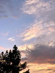 192/365: Sky high