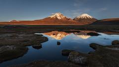 Reflected Payachatas (Andres Puiggros) Tags: d500 arica caquena chile landscape nightscape nikon star stars sunset atardecer light luz payachatas volcano