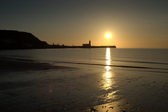 Scarborough Sunrise reflections (Tony Worrall) Tags: lancs lancashire city welovethenorth nw northwest update place location uk england north visit area attraction open stream tour country item greatbritain britain english british gb capture buy stock sell sale outside outdoors caught photo shoot shot picture captured sun sunset shine gold golden settingsun sunlit late dusk night evening sky glow glowing hue beauty nature glowingsun scarborough yorkshire northyorkshire yorks seaside reflections wetreflection