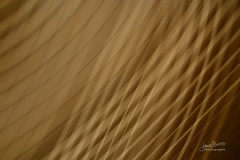 Kinetic 04 (James Milstid) Tags: kinetic abstract icm cameratoss movement intentionalcameramovement