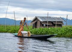 Equilibrio (Nebelkuss) Tags: myanmar lagoinle inlelake asia birmania burma lago lake inle barca boat row remo fujixt1 fujinonxf1855