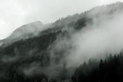 austria (anke.deutschmann) Tags: nebel dust wald forest himmel sky berg mountain lanscape landschaft