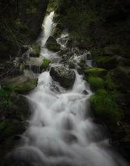 refreshing memories... (Alvin Harp) Tags: may 2017 i5 mountashland oregon waterfalls refreshing naturesbeauty sonyilce7rm2 fe1635f4zaoss leefilter10stop alvinharp