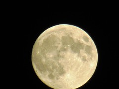 July full moon (creed_400) Tags: full moon july summer belmont west michigan