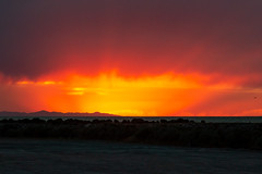 Curtain Call (O.S. Fisher) Tags: antelopeisland greatsaltlake utah beautiful brilliant color colorful explosion mountain nature orange red sky sunset water yellow