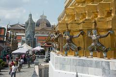 THL0795 (deandenby86) Tags: thailand phuket au nang ladyboys elephant lizard krabi karon bangkok