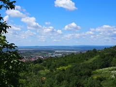 egy szép nyári nap / a nice summer day (debreczeniemoke) Tags: nyár summer erdő forest város town nagybánya baiamare látkép landscape olympusem5