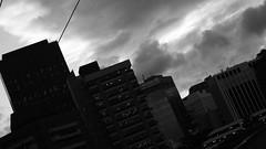 DSC06979 (A Common Courtesy) Tags: a common courtesy wellington auckland new zealand camera photo bw color black white day night monochrome bokeh sony nex 5a nex5a focuspeaking minolta mc pg 50mm 14rokkor fotodiox adapter
