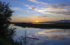 Scotch Pond (Clayton Perry Photoworks) Tags: vancouver bc canada richmond summer steveston garrypointpark explorecanada explorebc sunset scotchpond