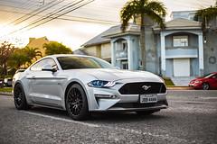 Ford Mustang GT 2018 (Natty France @nfsphoto) Tags: ford mustang gt fordmustanggt american musclecar canon6d canon 6d flagras flagra jurerêinternacional jurerê florianópolis floripa santacatarina sc brasil brazil br