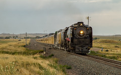 UP 844 South, Carr, CO (Max Wipperman) Tags: union pacific 844 steam cheyenne frontier days passenger train trains fast slow colorado wyoming denver up 1943