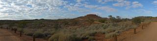 on the road to Lark Quarry (2)