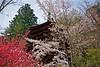 Mountain Spring (tez-guitar) Tags: shrine nara spring flower sakura cherryblossom cherry momno peach pentax pentaxart