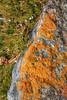 Mt Abraham gully,  Banff National Park (aud.watson) Tags: canadianrockies albertasrockies banffnationalpark highway11 davidthompsonhighway northsaskatchewanriver abrahamlake mountain mountains valley valleys peaks cliffs glacialvalley lake water glaciallake forest wood tree trees conifers pine pines fir spruce bighorncountry rock encrusting lichenlichenorange lichenxanthoria elegans sky cloud clouds landscape