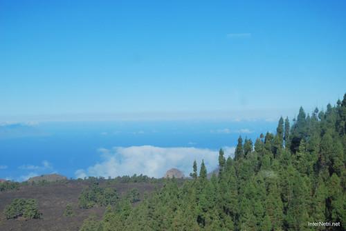 Понад хмарами, Тенеріфе, Канарські острови  InterNetri  019