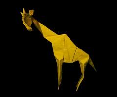 皱巴巴的长颈鹿 (guangxu233) Tags: origami origamiart paper art paperart paperfolding 折纸 折り紙 折り紙作品 hideokomatsu