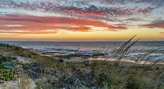 _DSC1965.jpg (David Hamments) Tags: v1 backbeach panorama sunset bunbury flickrunitedaward