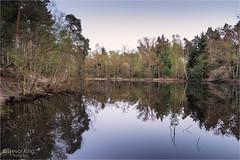 109/365 Oval Pond (Trev K1) Tags: project 365 sony a7ii minolta f284 landscape water pond woodland still reflection mirror calm peaceful 1735