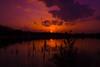 Camping Terspegelt (MartijnMol1976) Tags: camping terspegelt sony sonya58 meer lake campingterspegelt tamron tamron1750 tamronspaf1750mmf28xrdiiivcasphericalif color colour colors colours martijnmol eersel vakantiepark vakantie noordbrabant natuur nature sundown sunset zonsondergang zon horizon