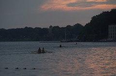 early birds (humbletree) Tags: madisonwisconsin morninglight lakemendota rowing