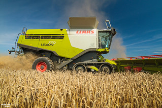 Wheat Harvest | CLAAS