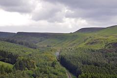 32375 (benbobjr) Tags: england english uk unitedkingdom gb greatbritain britain british northyorkshire yorkshire ryedale northridingofyorkshire northyorkmoors nationalpark moor moors