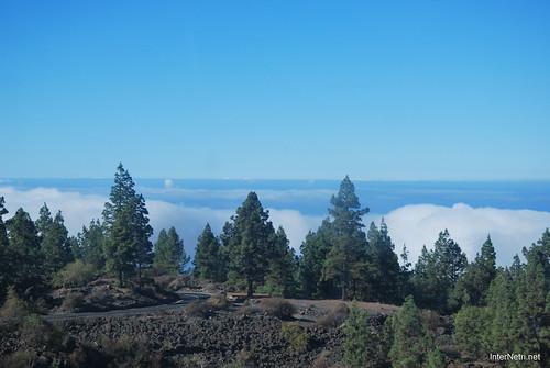 Понад хмарами, Тенеріфе, Канарські острови  InterNetri  011