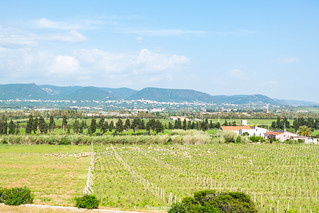 Panorama dalla Cantina Mesa
