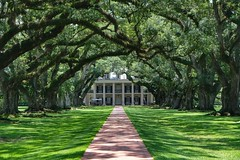 Oak Alley Plantation (ipadzwochris) Tags: green tara nature trees voyage holiday reise travel southernstates südstaaten south plantation oakalleyplantation louisiana amerika america usa