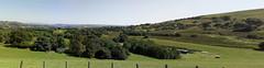 D18749-50,p.  View From Llyn Celyn Dam. (Ron Fisher) Tags: pano panorama llyncelyn reservoir lake mobilephone snowdonia gwynedd gogleddcymru cymru northwales wales gb greatbritain uk unitedkingdom europe