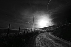 Follow the sun (alestaleiro) Tags: foolowthesun sun sol sepia mono monochrome sole camino path sendero trilha ruta estrada way countryside campo morning morn alestaleiro