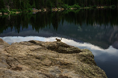 Top of the World! (SahilH) Tags: sonyalphadslr slta99 variosonnart282470 reflection water animal mountain rock lake colorado