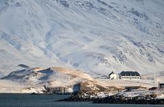 The houses in the island of Viðey, Reykjavík, Iceland (thorrisig) Tags: 12022018 esja esjan reykjavík viðey fjall fjöll snjór vetur sigurgeirsson sigurgeirssonþorfinnur thorrisig thorfinnursigurgeirsson thorri þorrisig thorfinnur þorfinnur þorri þorfinnursigurgeirsson iceland ísland island dorres winter snow cold