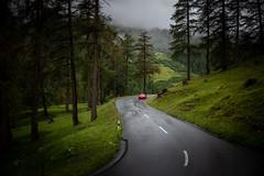 Farbtupfer (Chris Buhr) Tags: albula albulapass schweiz switzerland landschaft natur landscape grün green sommer summer porsche car red rot street strase outdoor regen rain leica