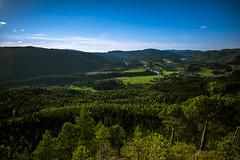 Bangdalen from South HDR (Jan Eirik Berre) Tags: norway forest hdr nature woods skog natur norge bangdalen