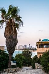 Netiv HaMazalot, Tel Aviv Yafo (Jose Antonio Abad) Tags: agua joséantonioabad mar arquitectura pública telaviv israel jaffa atardecer paisajeurbano paisaje telavivdistrict il