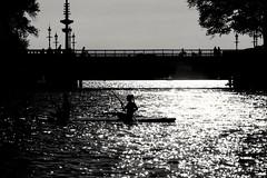 Pagaie au cœur de Hambourg (frenziM´s little world) Tags: bridge blackandwhite monochrome hamburg water germany sport backlight darknesslight contrejour canoneos200d silhouette city elbe