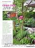 Цветники в саду №8 2018