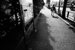 Street (ademilo) Tags: street streetphotography pedestrians pedestrian people tokyo japan